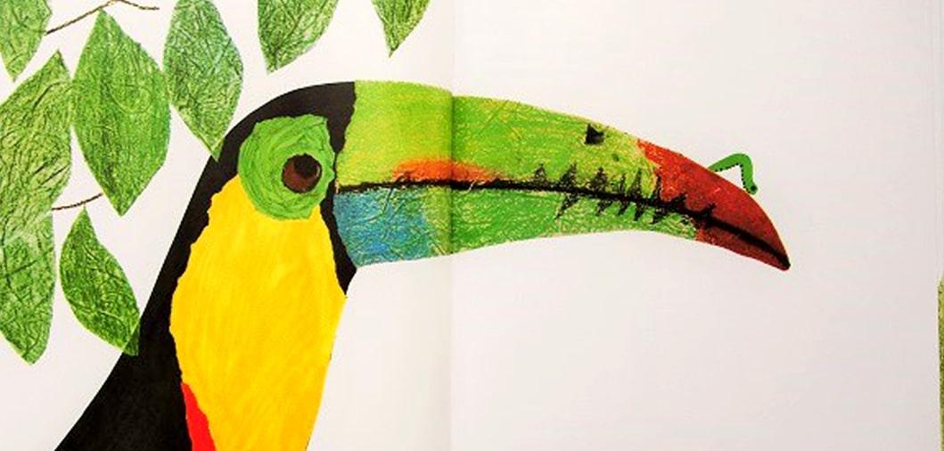 Tucán colorido de álbum ilustrado para la educación ambiental
