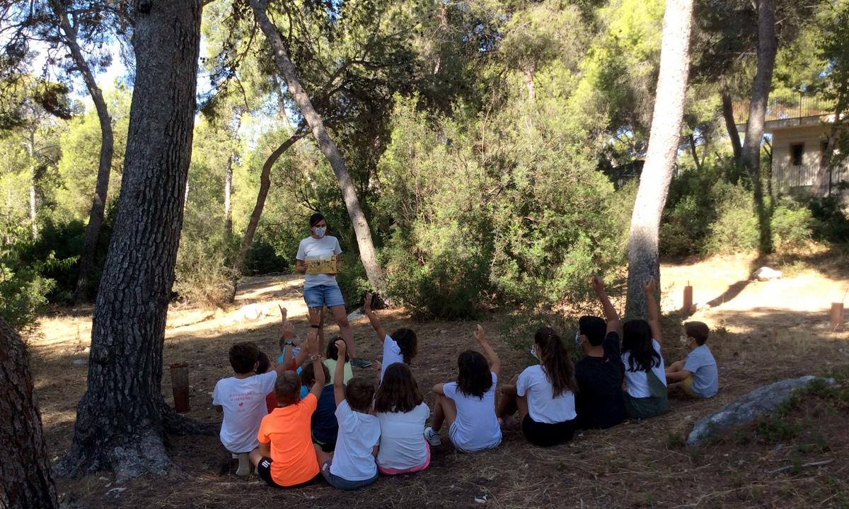 Escuela_animacion_lectora_educacion_ambiental_cuentos